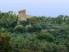 Tour Pagliaccetto à Torre in Pietra
