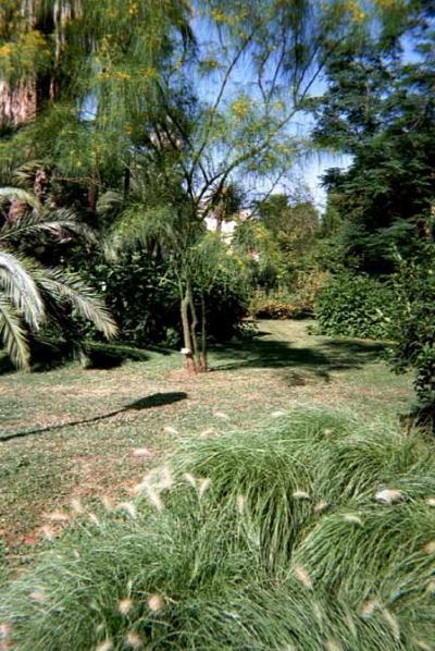 Orto botanico de Rome