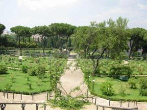 Roseto roseraie de Rome