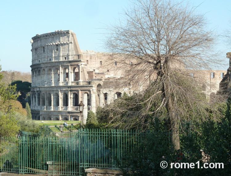 Musées de Rome Colisée de Rome