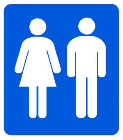 Toilettes publiques à Rome